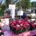 """Vente de Fleurs Solidaires et de Rubans Rose le Dimanche 15 octobre 2017 """"Brocante d'Anizy-le-Château"""""""